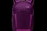17L 輕量多功能背包  (潘普洛納紫/粉桃紅)  NT$2,180元